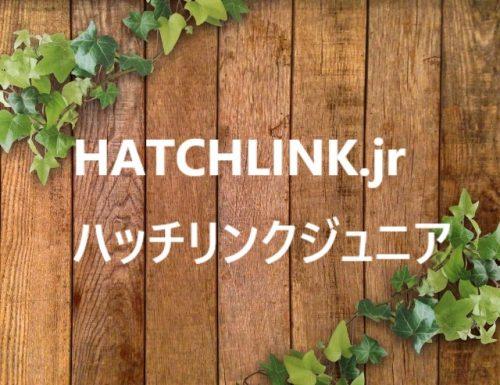 ハッチリンクジュニア