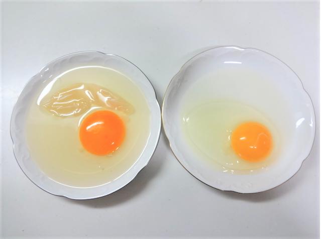 割った酢漬け卵と、割った普通の卵の比較写真